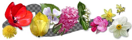 flower icons spring flower iconsReal Flower Icons